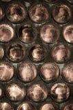 Стена стеклянных бутылок основывает сложенный вперед Справочная информация Se Стоковые Фотографии RF