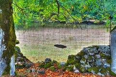 стена Сух-камня с мхом в Сардинии стоковые изображения rf