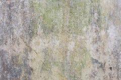 Стена с зеленой прессформой и грязь на поверхности стоковая фотография rf