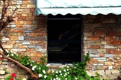 Стена с лозами Стоковое Фото