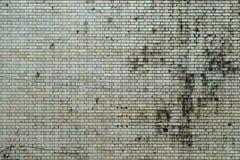 стена текстурированная grunge Стоковая Фотография