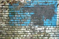 стена текстурированная grunge Стоковое Фото