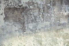 стена текстуры завода предпосылки малая стоковые изображения