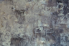 стена текстуры завода предпосылки малая стоковое изображение rf