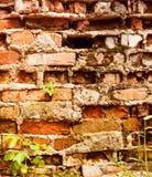 стена текстуры кирпича предпосылки старая стена grunge старая Сильно городская текстура предпосылки деталей Стоковые Фотографии RF