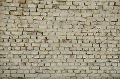 стена текстуры кирпича старая Стоковое фото RF