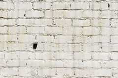 стена текстуры кирпича старая Стоковые Изображения RF