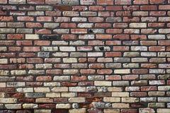 стена текстуры кирпича Стоковые Фотографии RF