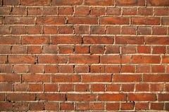 стена текстуры кирпича Стоковая Фотография