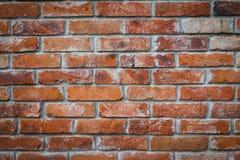 стена текстуры красного цвета кирпича Стоковые Изображения RF