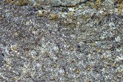 стена текстуры предпосылки старая каменная Стоковое Фото