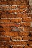 стена текстуры цемента Стоковые Фотографии RF