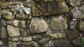 Стена утеса бежать через лес осени Стоковые Фото