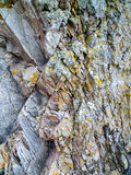 Стена утеса в шотландской земле Стоковая Фотография RF