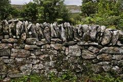 стена утеса Стоковые Изображения