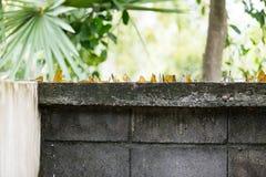 Стена цемента с сломленным стеклом Стоковые Фото