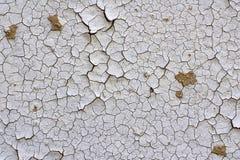 стена шелушения Стоковое Изображение