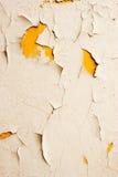 стена 7 Стоковые Изображения