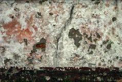 Стена 4211 Стоковые Фотографии RF