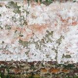 Стена 4212 Стоковое фото RF