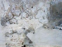 Стена 4228 Стоковые Изображения