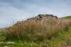 Стена Brocken сухая каменная на вересковой пустоши Стоковое Фото