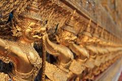 Стена Garuda стоковые фото