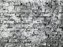 стена rastre изображения кирпича предпосылки Стоковые Фото