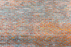 стена rastre изображения кирпича предпосылки Стоковые Изображения RF