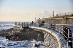 стена seaburn моря Стоковая Фотография RF