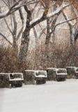 Стенды в парке Стоковое Изображение RF