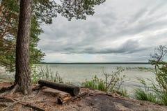 Стенд вносит дальше берег в журнал озера с сценарным взглядом Стоковое Фото