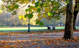 Стенд в парке осени стоковая фотография