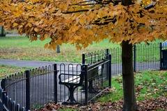 Стенд в парке осенью Стоковое Изображение RF