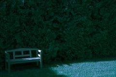 Стенд в саде, лунный свет Стоковые Изображения RF