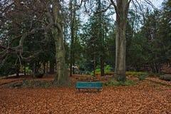 Стенд изолированный в pubblic парке дворца Estense, в Варезе Стоковое Изображение