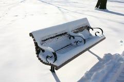 стенд покрыл снежок парка Стоковая Фотография RF