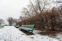 Стенд покрытый с снегом в парке стоковая фотография