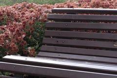 стенд с цветками Стоковые Изображения RF
