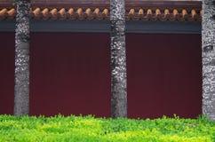 Стены дворца Стоковая Фотография RF