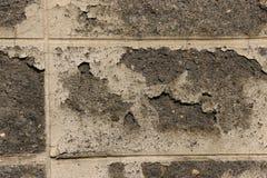 Стены гипсолита, слезая краску стоковые фото