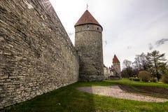 Стены городка Таллина старого, Эстонии стоковая фотография