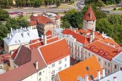 Стены и башни городка Таллина старые от верхней части церков St Олафа, Эстонии стоковые фотографии rf