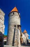 Стены и башни города в Таллине Стоковое Изображение RF