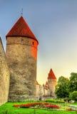 Стены и башни города в Таллине Стоковые Изображения