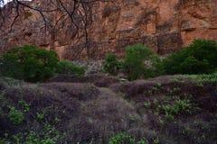 Стены каньона вперед к югу от кемпинга Стоковая Фотография