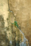стены предпосылки abstrct конкретные старые Стоковая Фотография