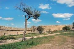 Стены средневекового замка Ackerman стоковое фото