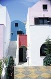 стены цветов Стоковые Фотографии RF
