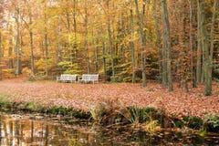 2 стенда на береге в осени, Нидерландах Стоковые Изображения